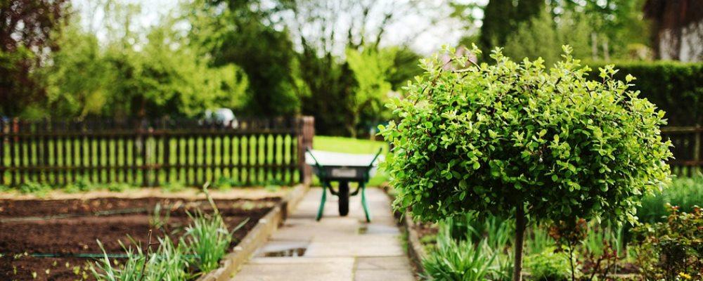 bonus verde e giardini privati 2018